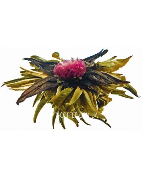 Рубин Императора зеленый вязаный чай Чайна Країна