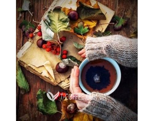 Корисні добавки до чаю: зміцнюємо імунітет