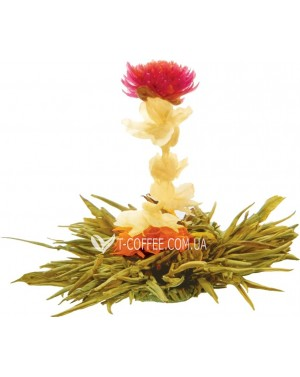 Богиня Милосердия зеленый вязаный чай Чайна Країна фото