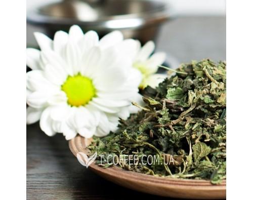 Как хранить и заваривать травяной чай