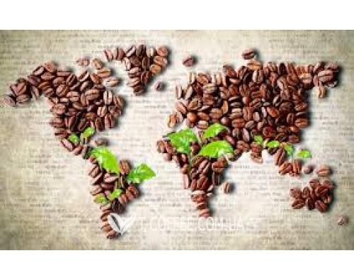 Пути распространения кофе