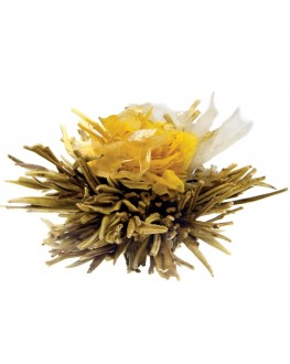 Крылья Бабочки зеленый вязаный чай Чайна Країна